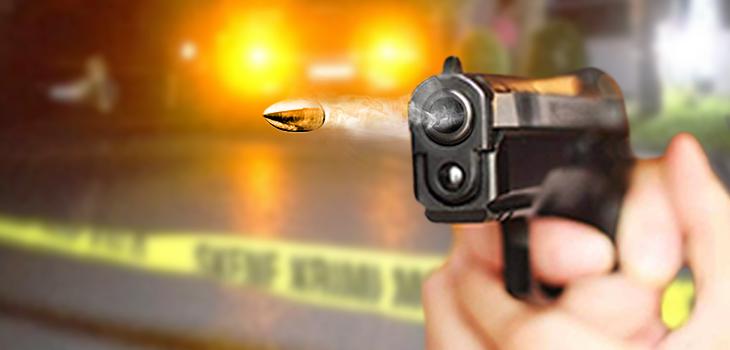 VIDEO/ Dy vëllezër vrasin me armë zjarri fqinjin pas sherrit për pronat. Arrestohet njëri prej tyre